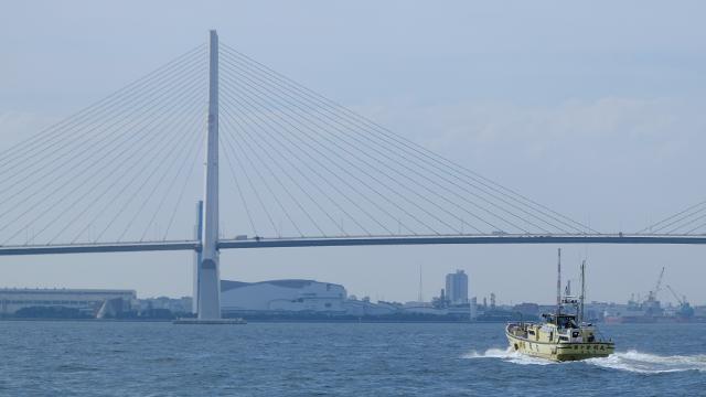 東京湾 横浜 鶴見 新明丸 釣り ベイブリッジ